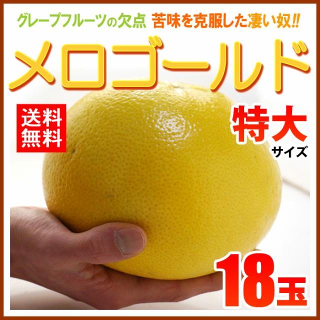 【送料無料】完熟メロゴールド特大(18玉)糖度の...