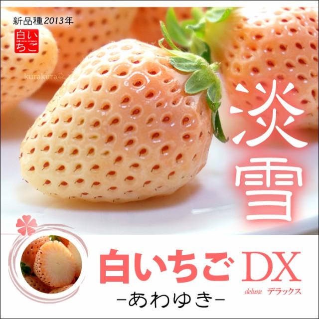 【送料無料】甘い香りがスゴイ!希少な白いちご「...