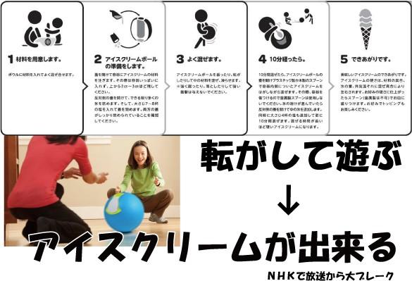 【送料無料】アイスクリーム ボール モチヅキ Y...