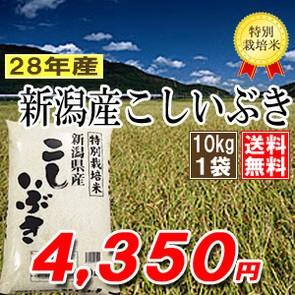 新潟県産こしいぶき 10kg 特別栽培米 28年産 送料...