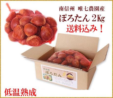 10/13または10/20一斉発送!生栗ぽろたん2キロ【...