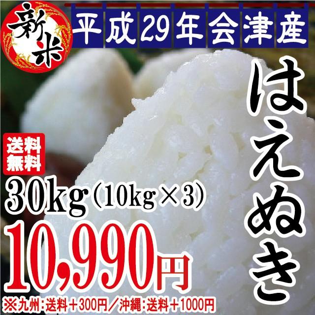 新米 はえぬき 白米 30kg(10kg×3)会津産 29年...