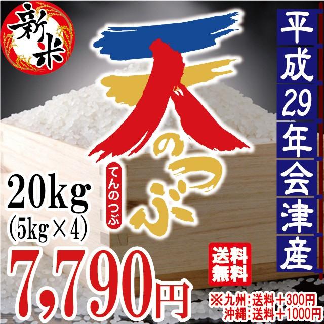 新米 天のつぶ 白米 20kg(5kg×4)会津産 29年産...