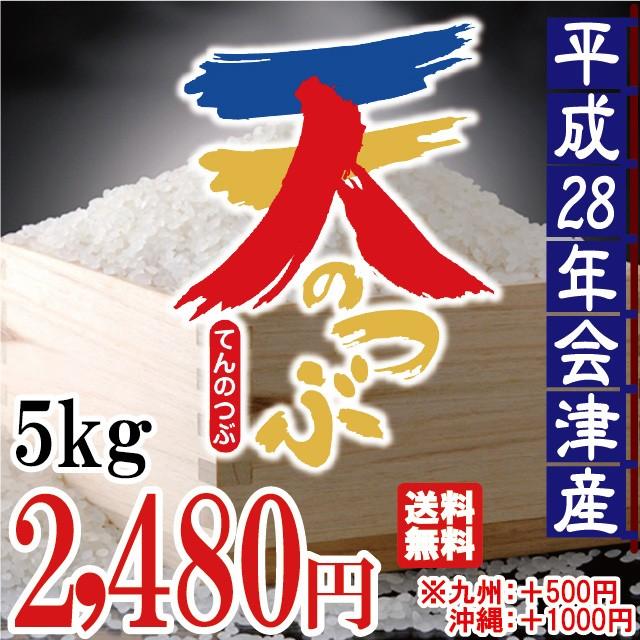 平成28年 会津産 天のつぶ 5kg  ※九州は別途500...