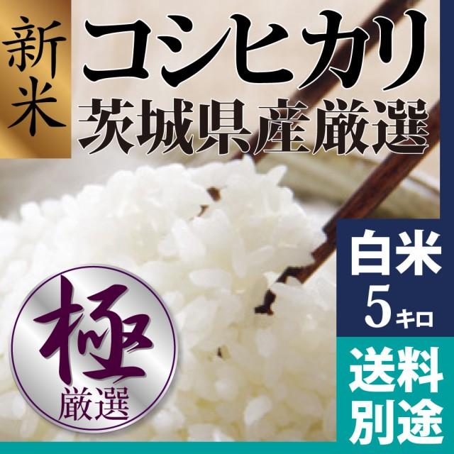 新米 コシヒカリ 白米 5kg 28年新米茨城県産 美味...