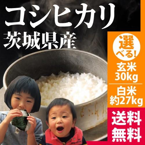 *玄米食に人気のお米* 農薬が少ないコシヒカリ ...