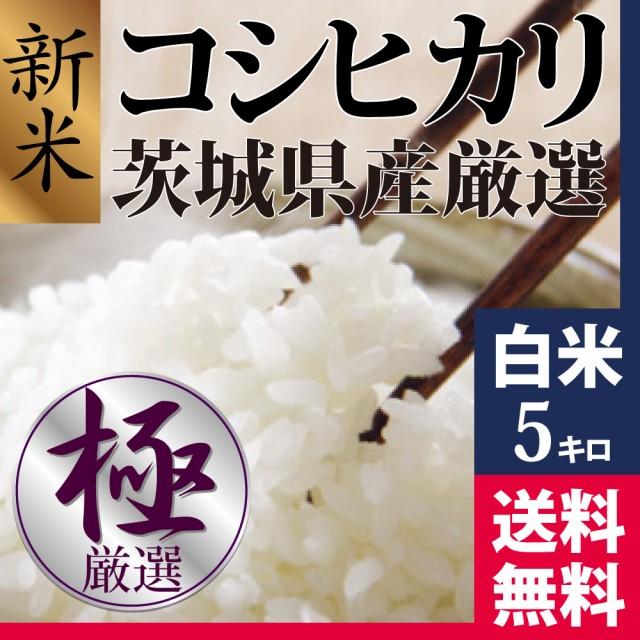 新米コシヒカリ 白米 5kg 28年茨城県産 品質保証 ...