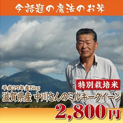 【29年産】滋賀県産中川さんのミルキークイーン5k...
