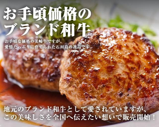 【送料無料】石垣島のブランド和牛!美崎牛ハンバ...