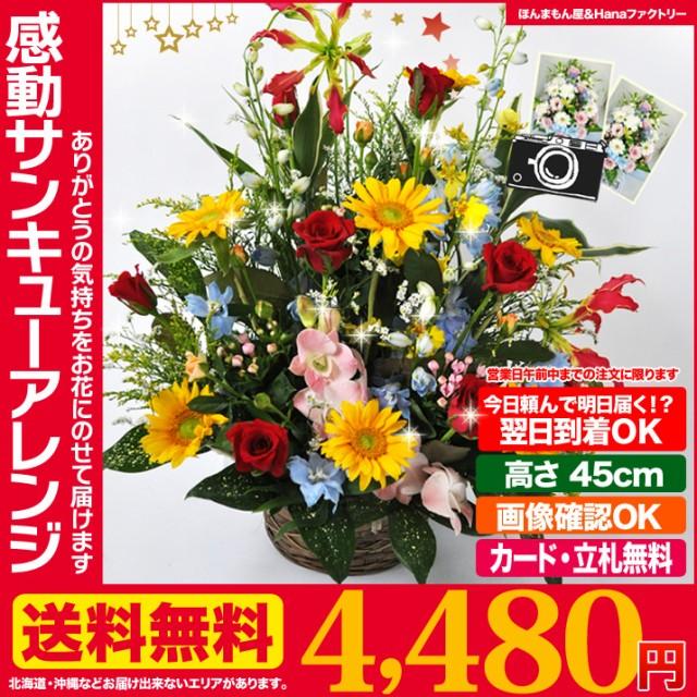 お届けは1月10日から◆ 誕生日 記念日 お祝い 花 ...