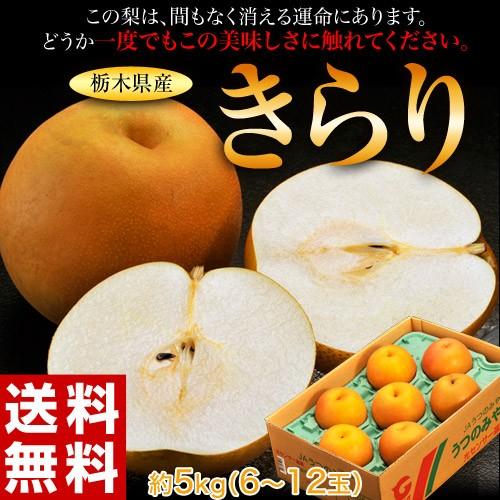 《送料無料》栃木県産 「きらり梨」 6〜12玉 約5...