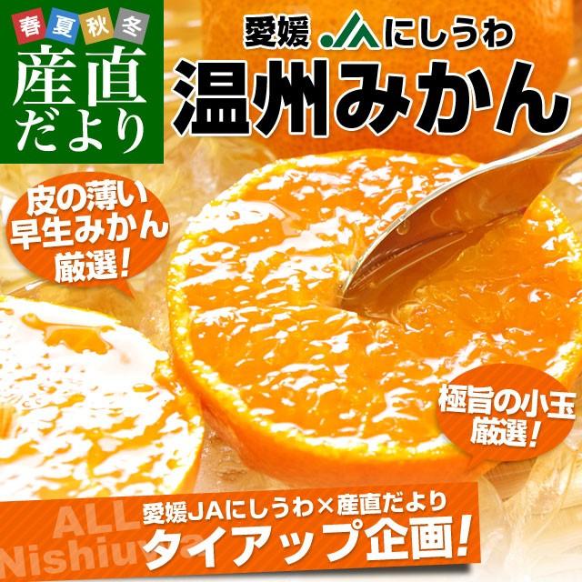 送料無料 愛媛県より産地直送 JAにしうわ 温州...