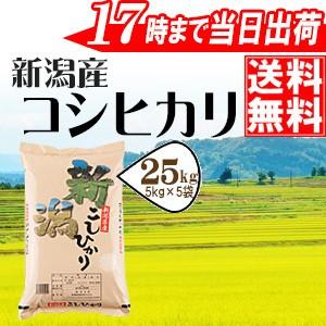 新潟県産コシヒカリ25kg(5kg×5袋)【28年産】【送...