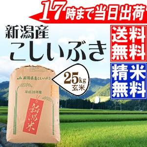 玄米25kg 新潟県産こしいぶき 特別栽培米 28年産 ...