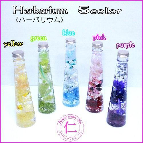 ハーバリウム 誕生日 プレゼント 【Cone/5color】...
