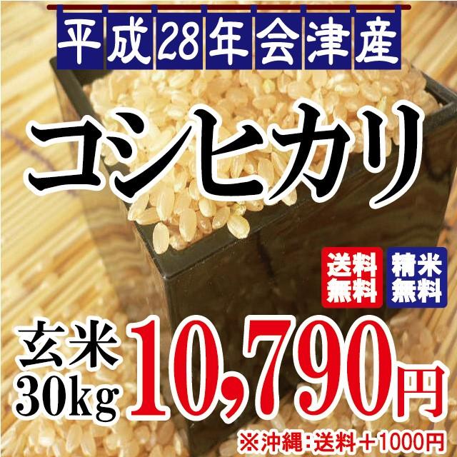 平成28年 会津産 コシヒカリ 玄米 30kg【佐川急便...