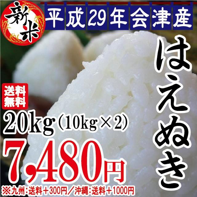 新米 はえぬき 白米 20kg(10kg×2)会津産 29年...