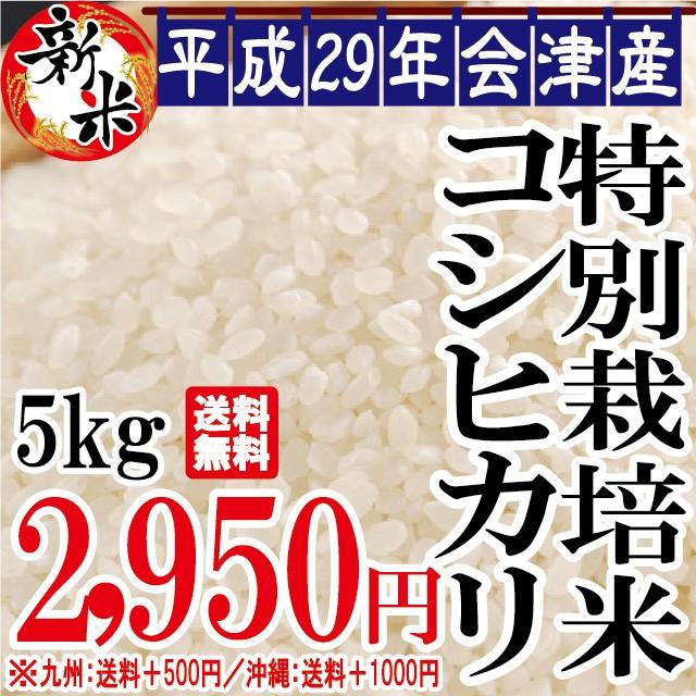 平成28年 会津産 特別栽培 コシヒカリ5kg ※九州...