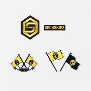 (先払いのみ) 韓国スターグッズ SECHSKIES(ジ...