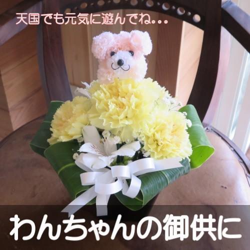 わんちゃんの御供用 生花アレンジメント(イエロ...
