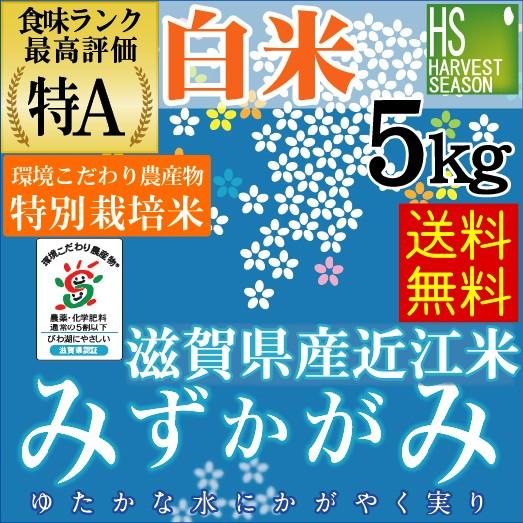 【送料無料】28年産 白米特別栽培米滋賀県産みず...