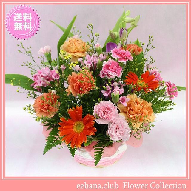 11月の誕生花★カラフルアレンジ3,500円【送料無...