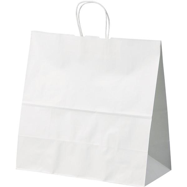 手提げ紙袋(大)4447-08