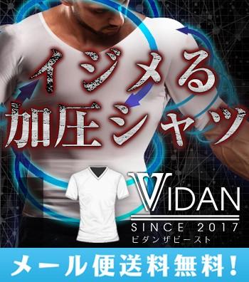 【メール便送料無料】VIDAN the BEAST ビダンザ...