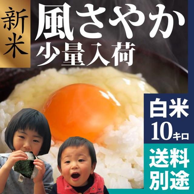 風さやか 白米 10kg 平成28年新米 長野県生まれの...