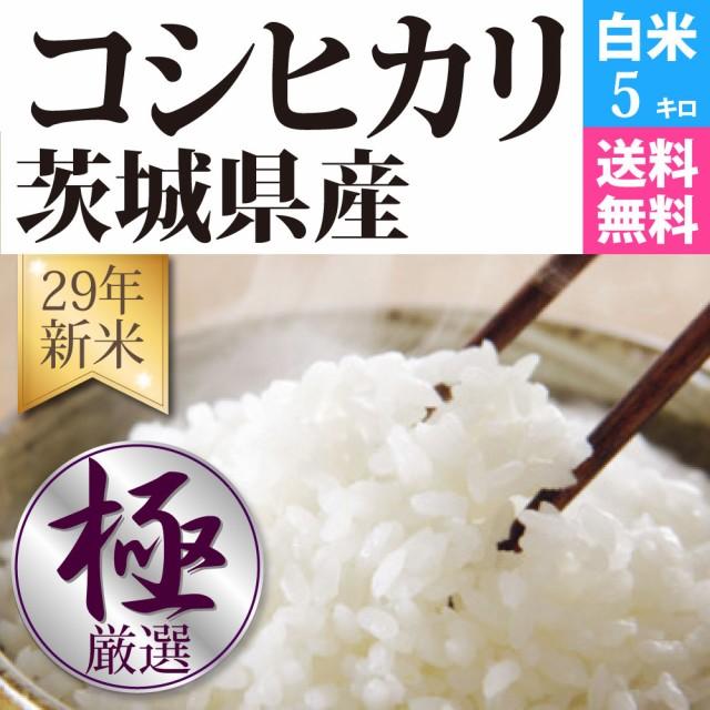 コシヒカリ 白米 5kg 29年新米 茨城県産 品質保証...