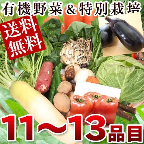 有機JAS認定野菜 特別栽培野菜 野菜セットLサイズ...