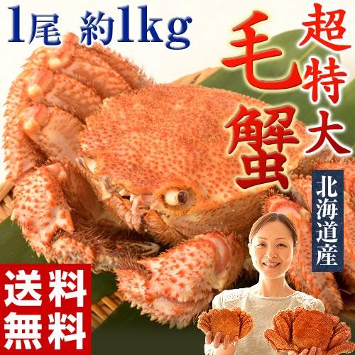 ≪送料無料≫北海道産 超特大「毛蟹」1尾×約1kg...