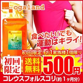 【初回限定】500円セール!!コレウスフォルスコリ...