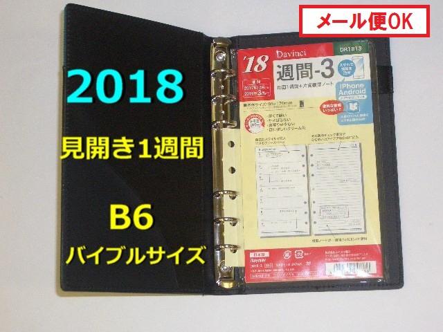 2018年 システム手帳 リフィル ダヴィンチ B6バイ...