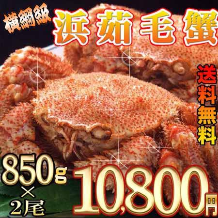 【送料無料】福毛蟹横綱級850g×2尾セット  ...