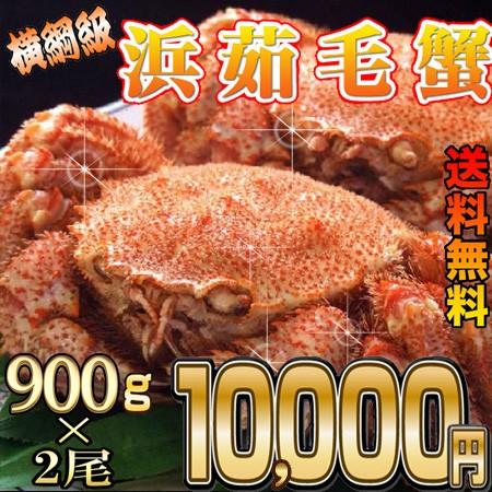 【送料無料】セットがお得!福毛蟹横綱級900g...