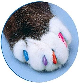 ソフトクロー ネコ用ネイルキャップ★爪とぎトラ...