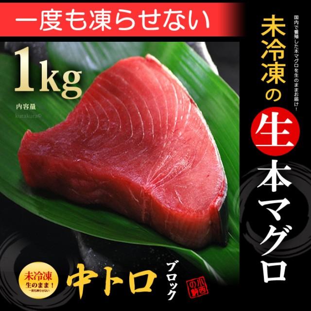 生本マグロ 中トロブロック(約1kg)国産(主に鹿児...