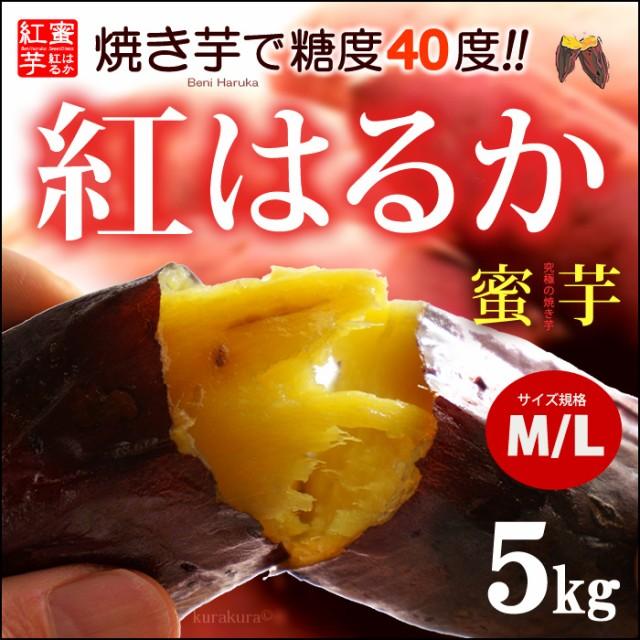 紅はるか M-L(5kg)熊本産 さつま芋 サツマイモ 甘...
