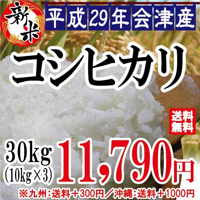 新米 コシヒカリ 白米 30kg(10kg×3)会津産 29...