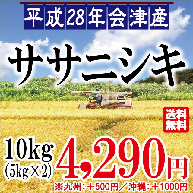 平成28年 会津産 ササニシキ 10kg(5kg×2) ※九...