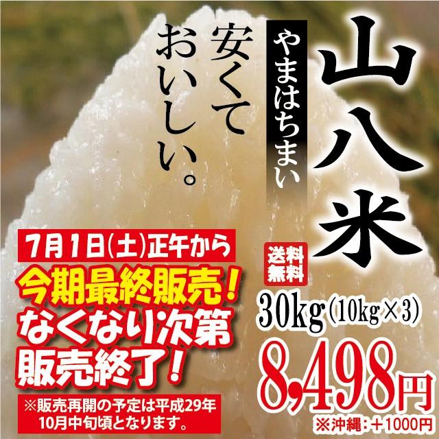 当店人気No.1 山八米 30kg(10kg×3)※沖縄は別...