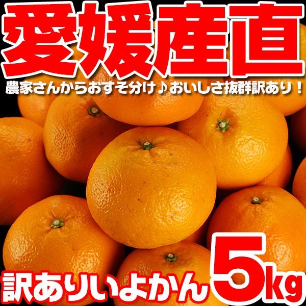 【送料無料】【訳あり】柑橘王国愛媛県から産地直...