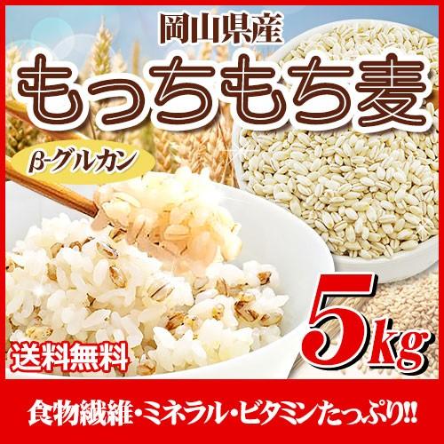 29年産 岡山県産大麦100%もっちもち麦5kg  送料...