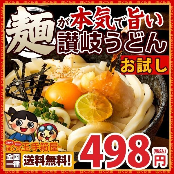 【送料無料】 讃岐うどん 麺が本気で旨い ご当地...