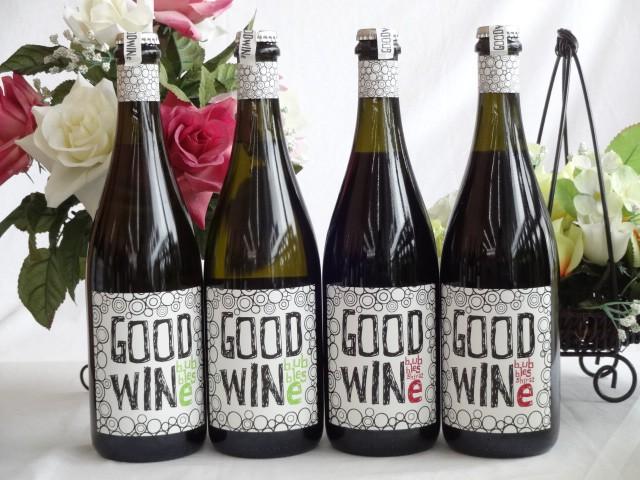 2セット スパークリング赤白ワインセット GOODWIN...