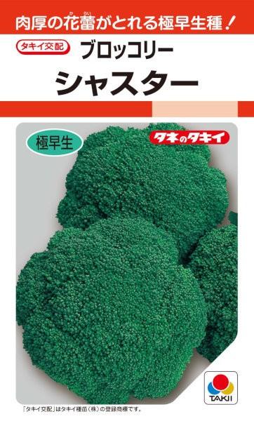 タキイ種苗 ブロッコリー シャスター 0.8ml