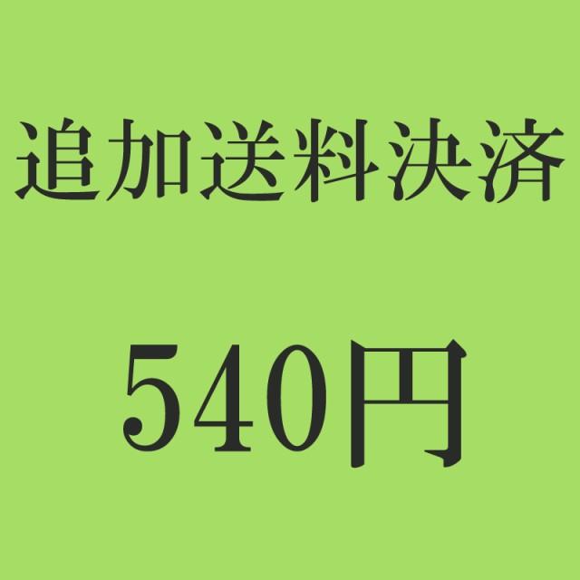 追加送料決済 540円
