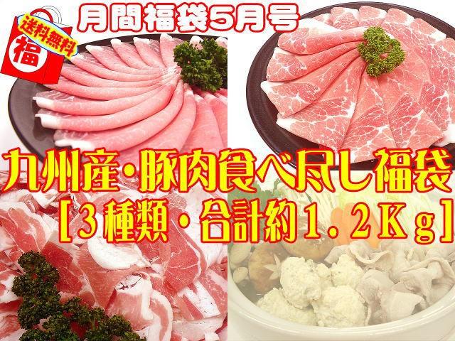5月福袋☆九州産豚肉食べ尽くし福袋[3種類・合...