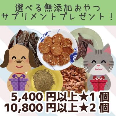 選べる無添加おやつ・サプリプレゼント!5,400円...